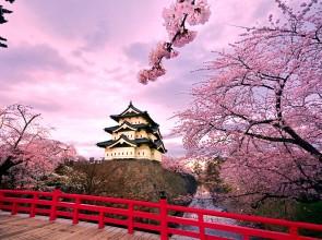 Очарование японской зимы